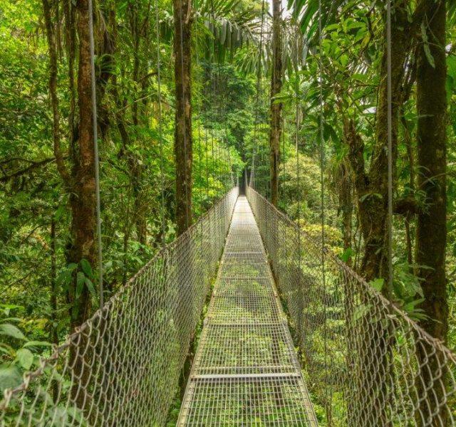 6 חופשות הטבע הטובות ביותר בעולם