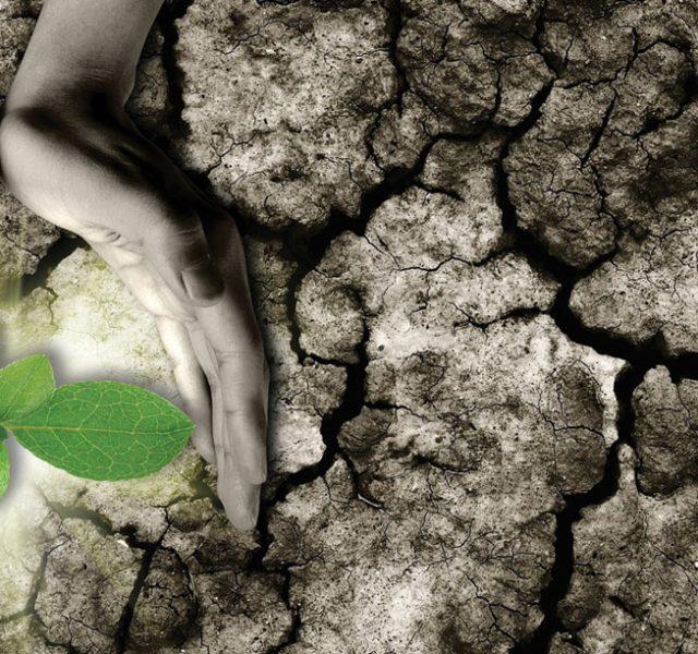 7 צעדים שנוקטות מדינות מתפתחות כדי להילחם במשבר האקלים
