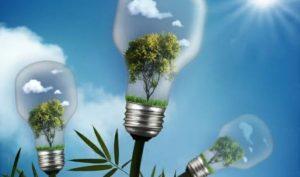 אנרגיה ירוקה - צילום - אינגאימג