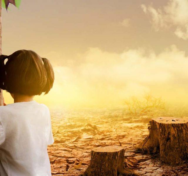 5 ארגונים ירוקים שאולי ימנעו את הכחדת כדור הארץ