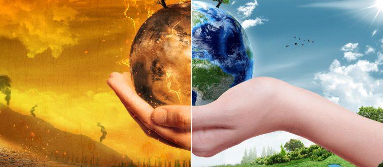 5 צעדים שהעולם נוקט כיום לפתרון משבר האקלים