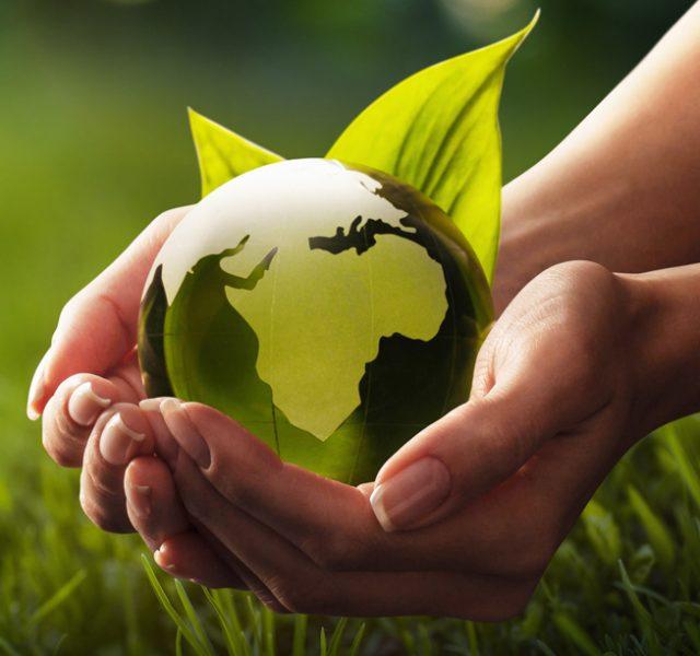 7 חברות שמקדשות 'קיימות' ורוצות להפוך את העולם לירוק יותר